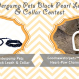 Enter the Goodnewsforpets & Vanderpump Pets Contest