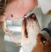 Dogs Understand What We Say—And How We Say It, New Study Says