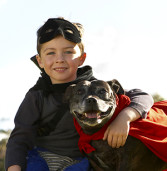 TEACHING KIDS TO BE SAFE AROUND DOGS