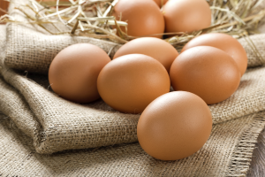 1475229100-7665-eggsfeatured-300x200