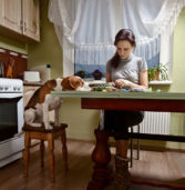 Quebec Law Would Say That Pets Are Not Property