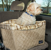 29 Ways to Spoil Your Pet