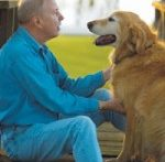 How to Help a Dog With Arthritis