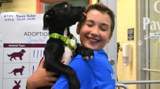 Teen Battling Cancer Uses Her Make-A-Wish to Find Homes for Needy Puppies